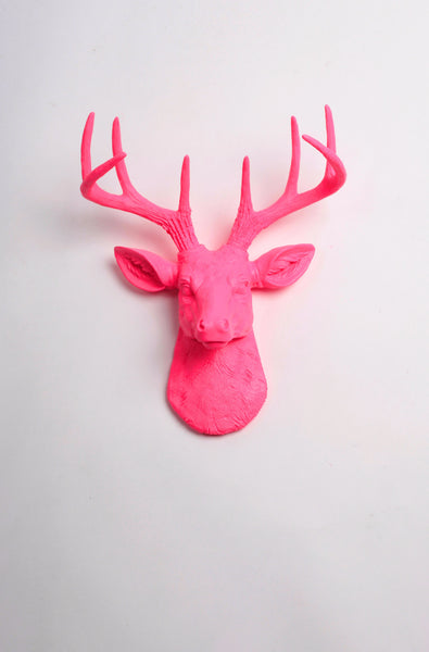 The MINI Alejandra | Stag Deer Head | Faux Taxidermy | Pink Resin