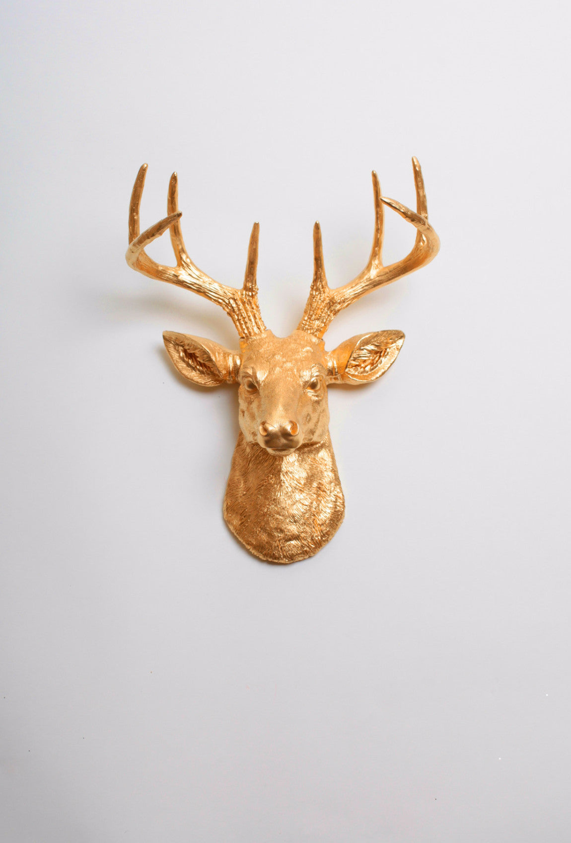 Gold Deer Head Wall Mount The Mini Franklin White Faux