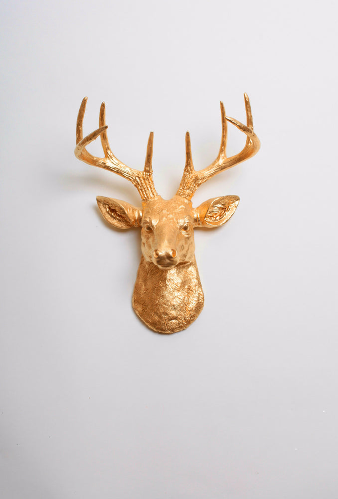 Mini Gold Deer Head Wall Mount