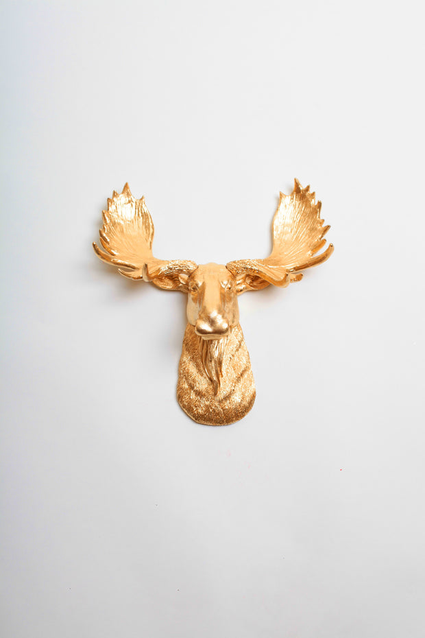 Mini Gold Moose Head Wall Mount