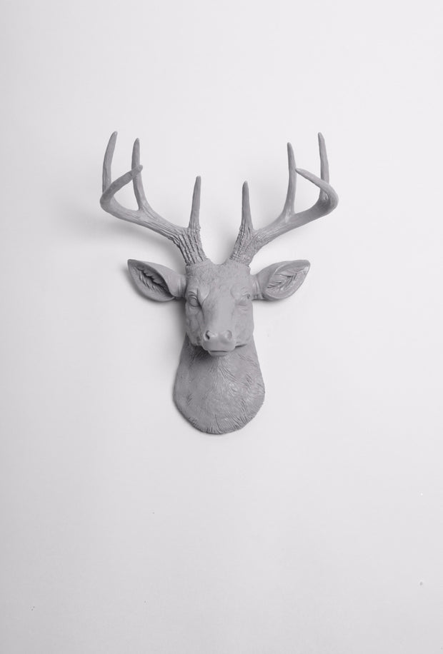 Mini Gray Deer Head Wall Mount