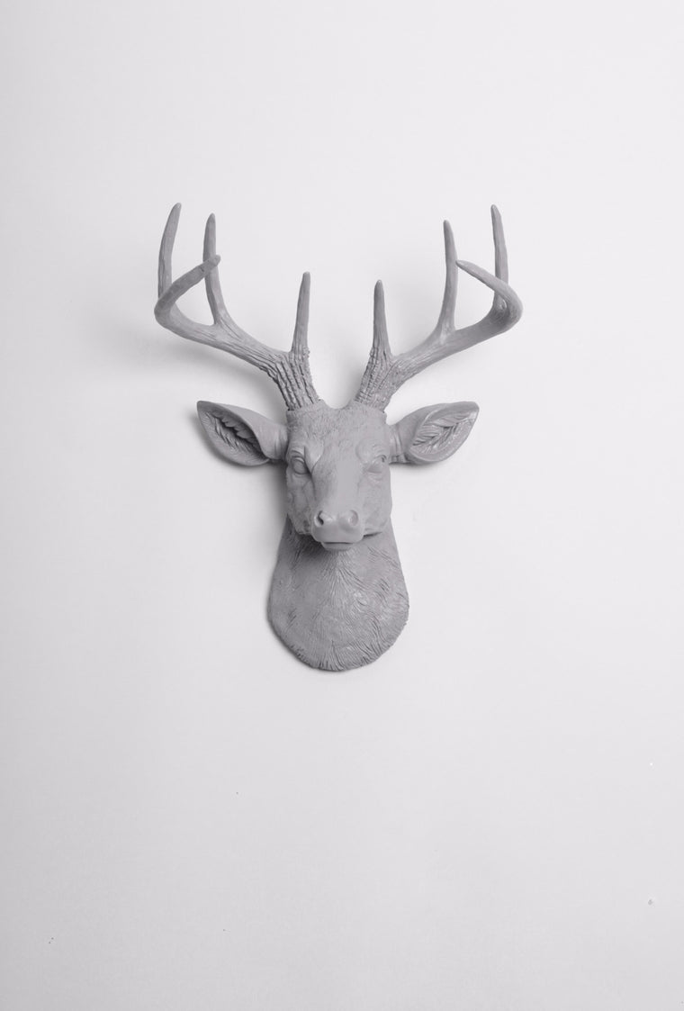 The MINI Geoffrey | Stag Deer Head | Faux Taxidermy | Gray Resin