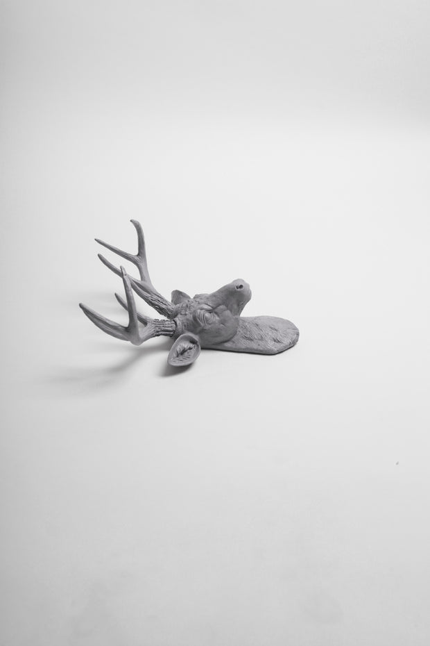 MIni Gray Stag Head Wall Mount