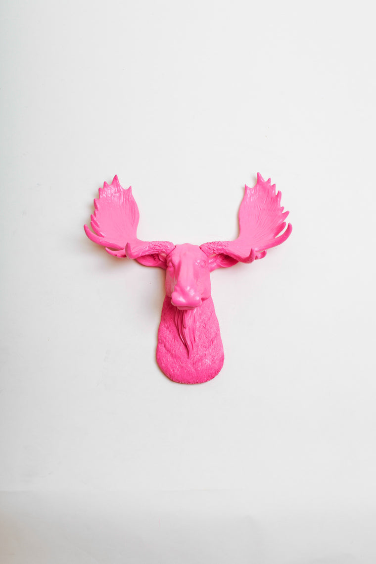 The MINI Phillipa | Moose Head | Faux Taxidermy | Pink Resin