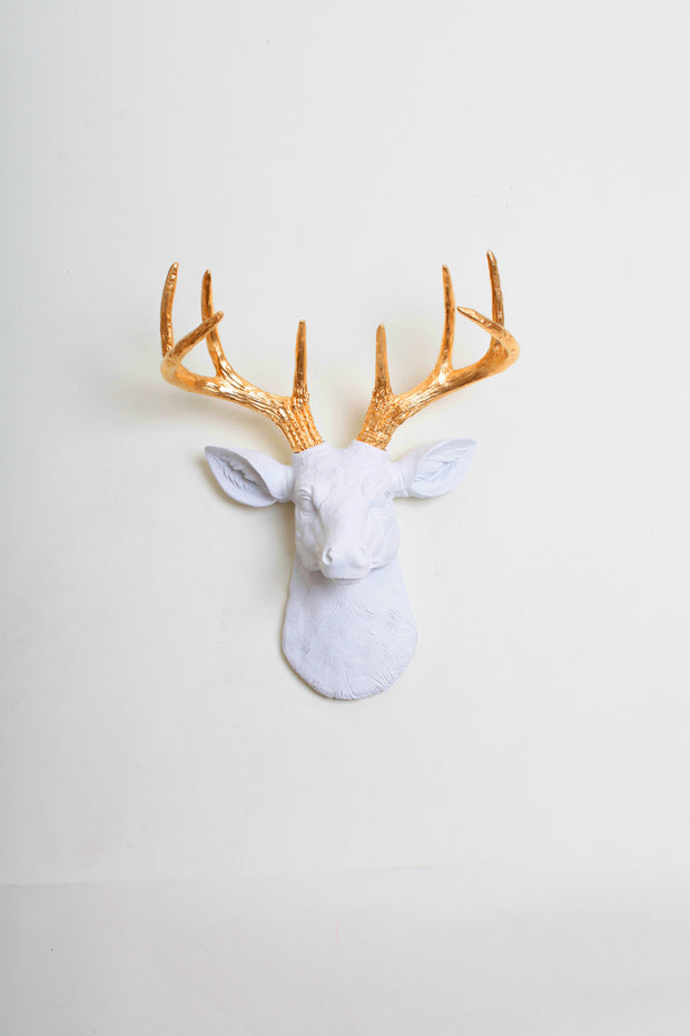 Mini Deer Head Wall Sculpture, White & Gold The Alfred. mini white resin deer head sculpture & gold antler decor wall hanging
