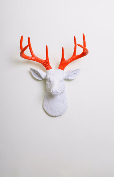 Small White Deer Head Wall Mount Orange Antlers Faux