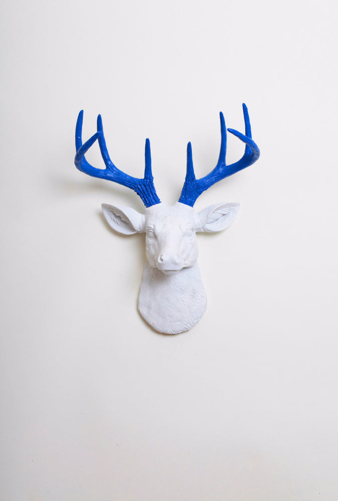The MINI Nora | Stag Deer Head | Faux Taxidermy | White Resin w/Blue Antlers