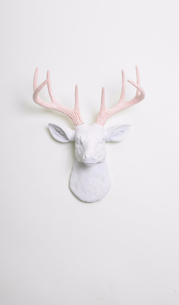 Cameo Pink & White Mini Deer Head Wall Mount. mini white resin deer head sculpture & cameo-pink antler decor wall hanging