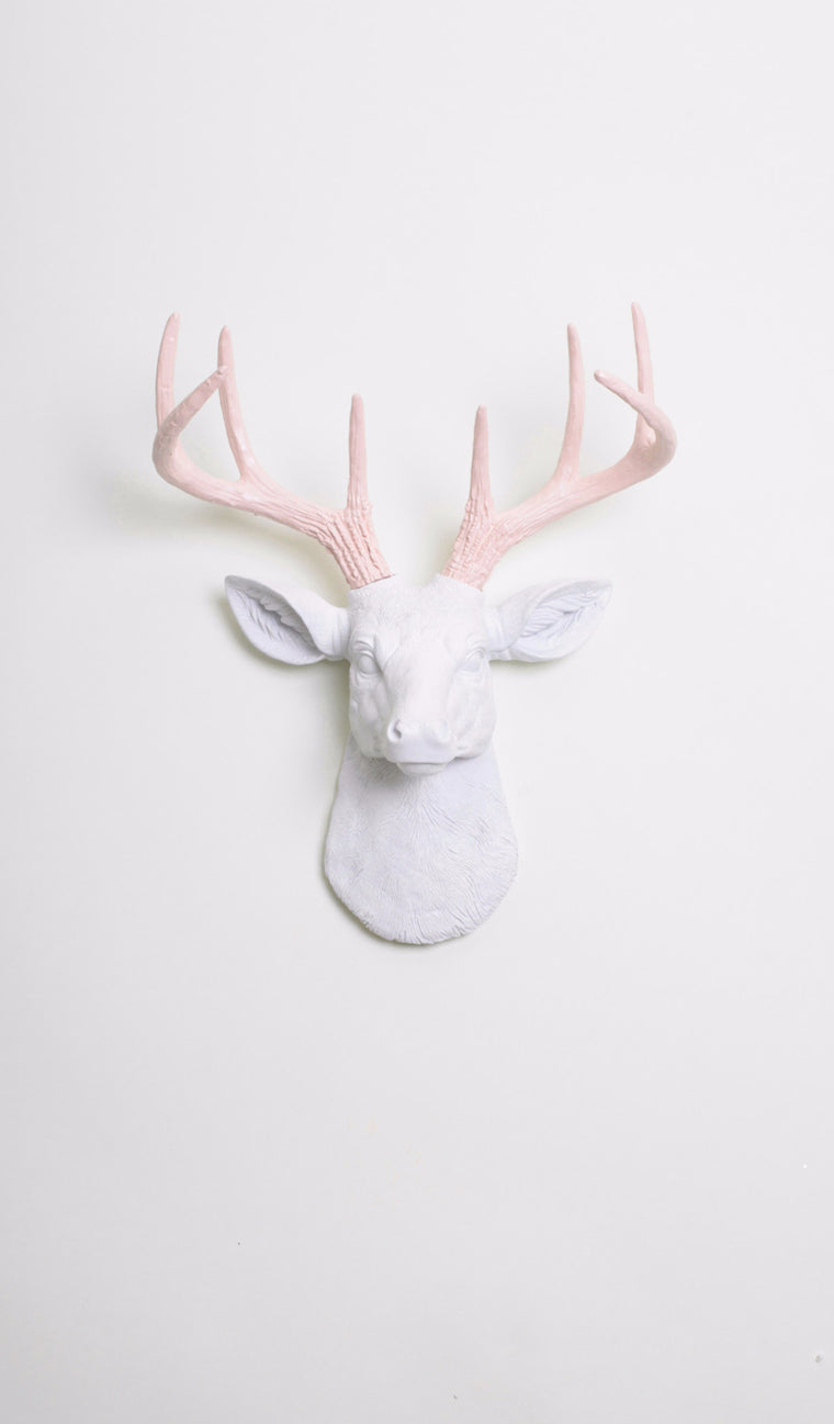 The MINI Cupid | Stag Deer Head | Faux Taxidermy | White Resin w/Cameo Pink Antlers