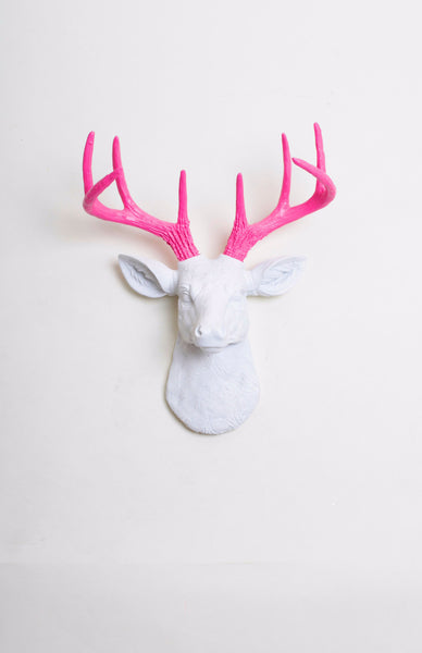 The MINI Boris | Stag Deer Head | Faux Taxidermy | White Resin w/Pink Antlers