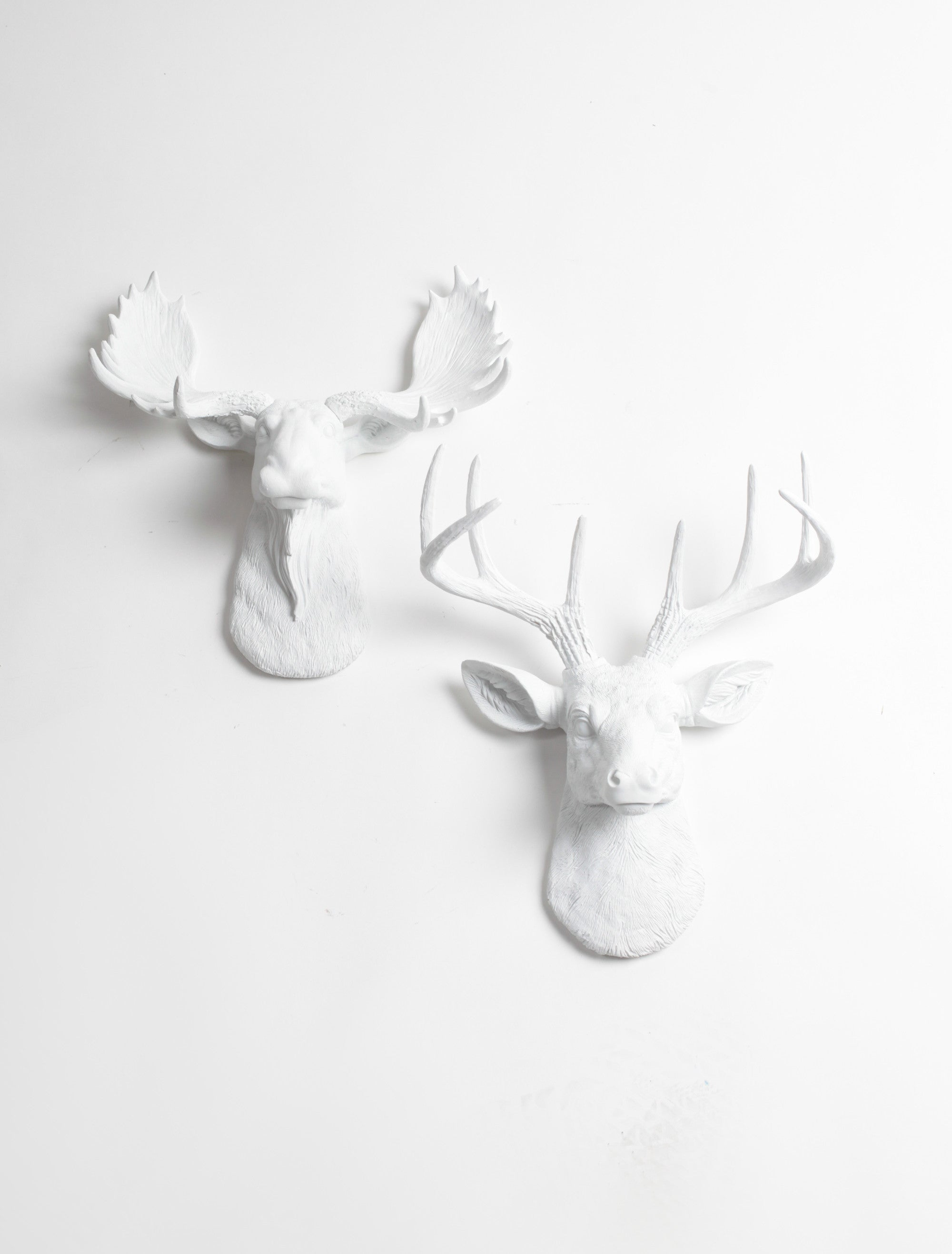 Ordinaire Mini Moose U0026 Deer Wall Decor | White Moose And Stag | Mini Wall Art Gift