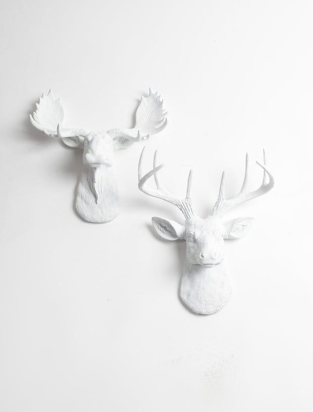 Mini Moose & Deer Wall Decor | White Moose  and Stag | Mini Wall Art Gift Set