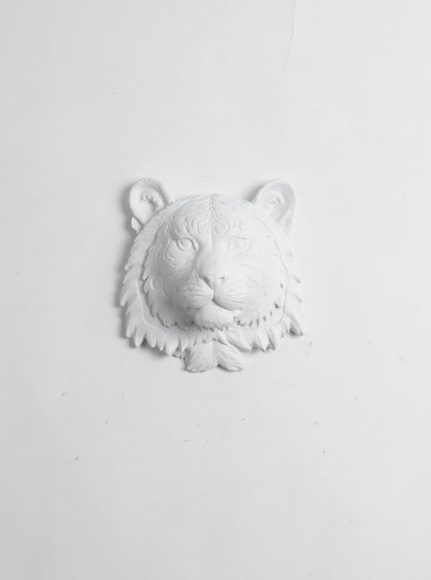 Mini Tiger Head Wall Mount