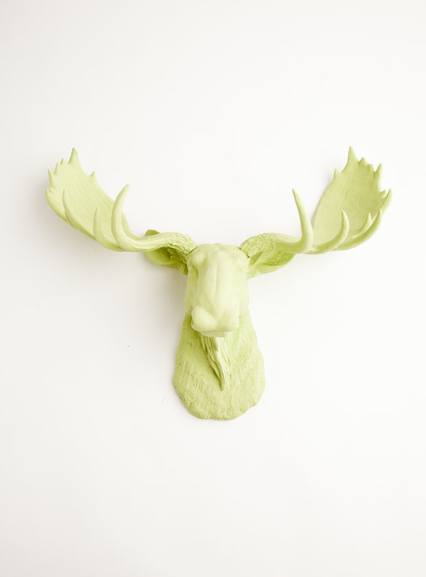 The Nico | Moose Head | Faux Taxidermy | Mint Green Resin