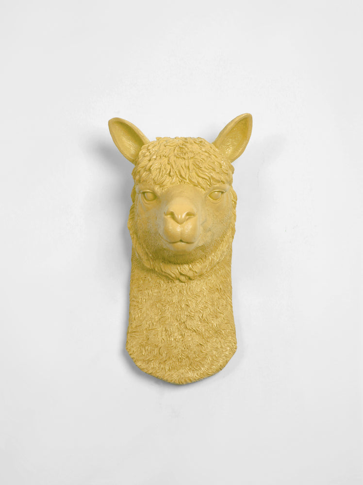Mustard-Yellow Alpaca Decor Wall Mount