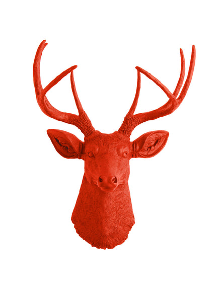 Orange deer head wall hanging, the Anastasia