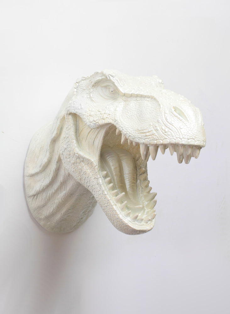 The Opal, Pearl White T-Rex Dinosaur Head Wall Mount