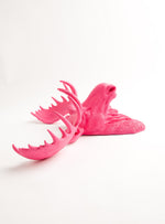 The Phillipa | Faux Moose Head | Faux Taxidermy | Pink Resin