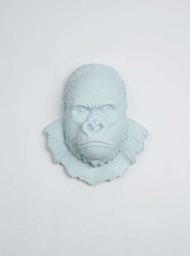 Powder Blue Gorilla Ape Head Wall Mount