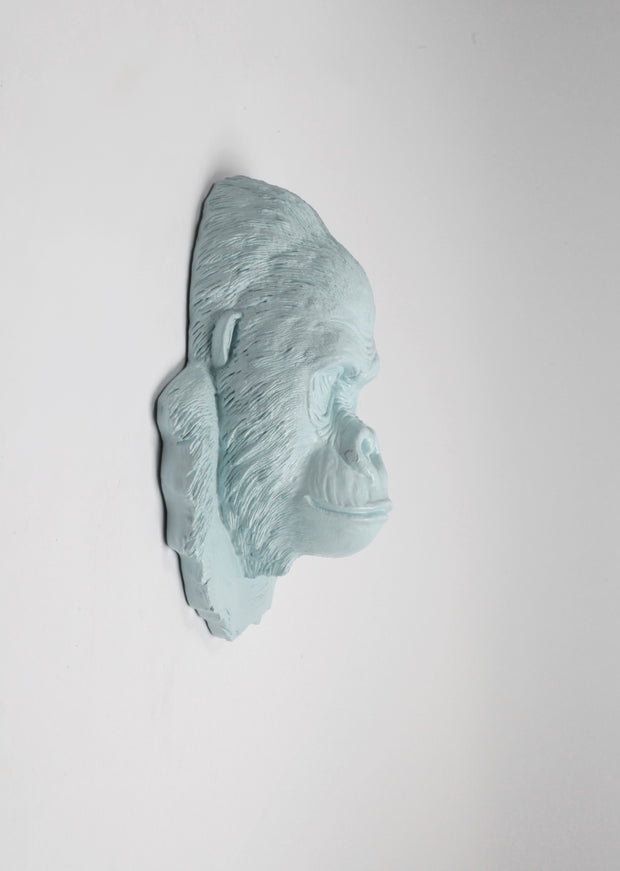 The Mambo in Powder Blue, Gorilla Head Wall Mount