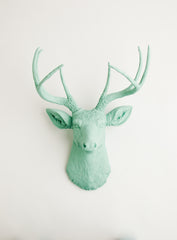 Seafoam Green Deer Head Wall decor, the Eleanor