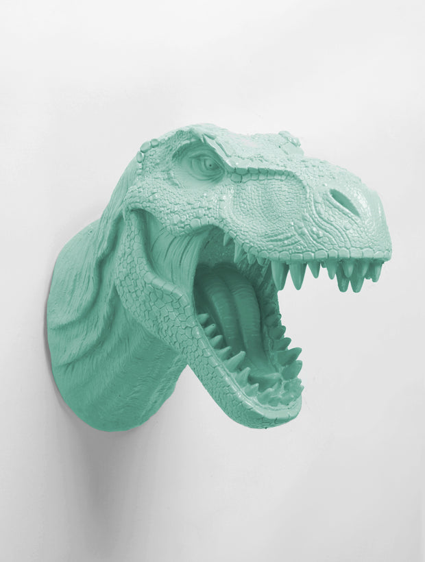 trex dinosaur head Trophy Form in Seafoam Green