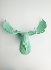 Seafoam Green Faux Moose Head Wall Mount