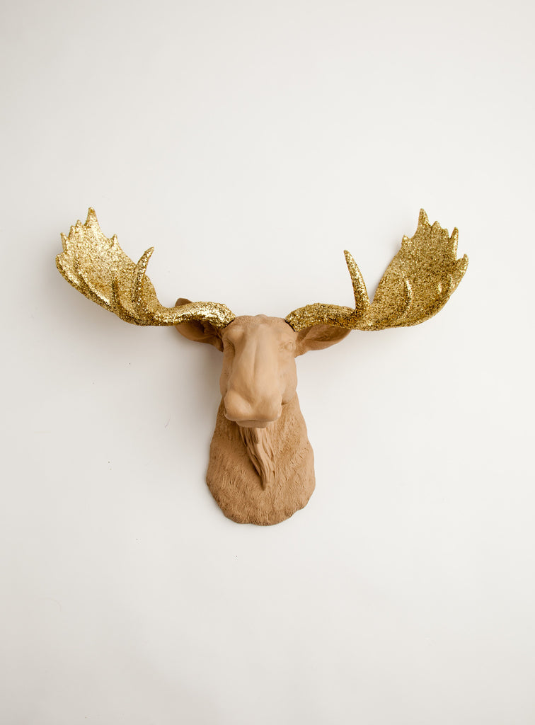 Tan Moose Head Wall Mount With Gold Glitter Antlers The