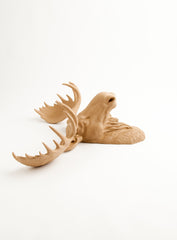 The Agatha | Moose Head | Faux Taxidermy | Tan Resin