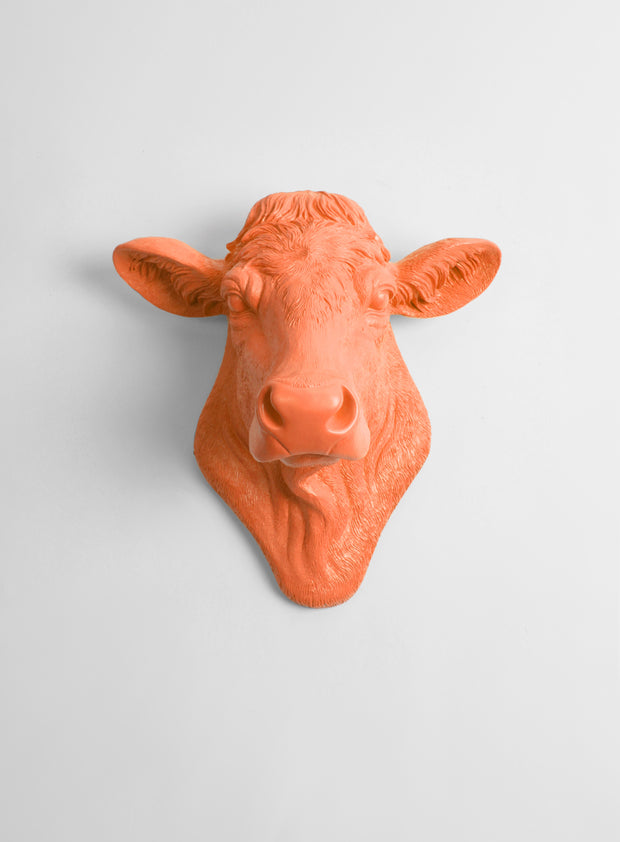 The Bessie in Tangerine, Cow Head Wall Decor