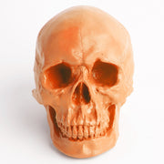 The Fitz in Tangerine | Trendy Victorian Gothic Human Skull Art