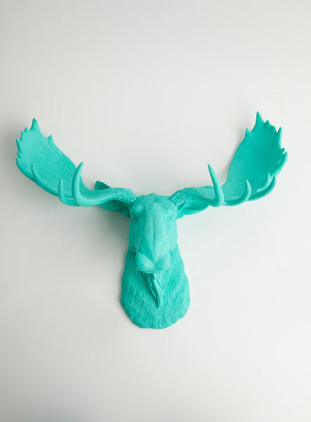 The Tiffany | Faux Moose Head | Faux Taxidermy | Turquoise Resin