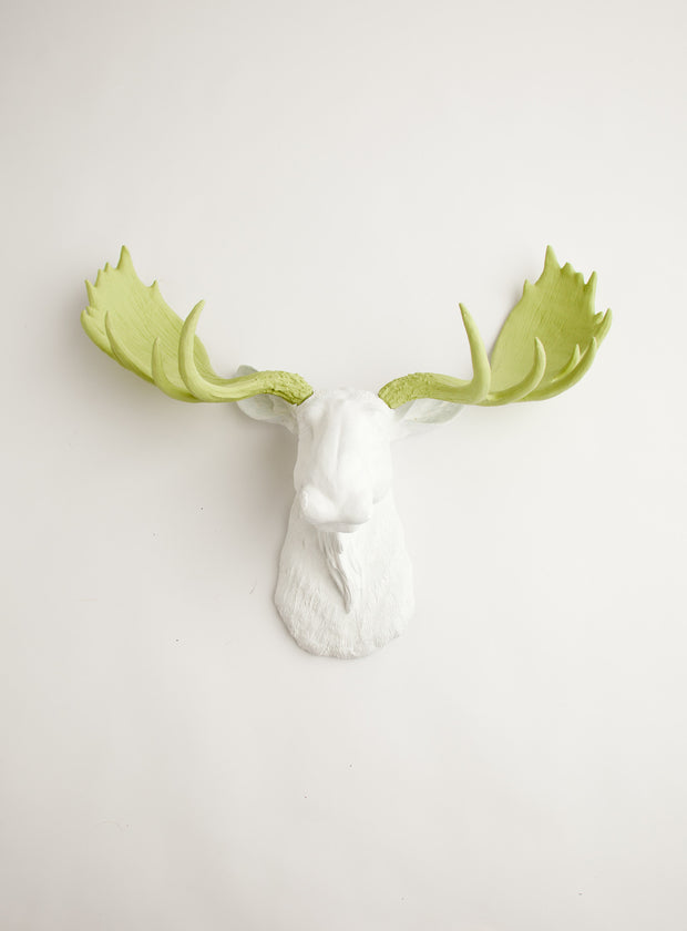 Mint Green Moose Head Hanging for the Wall