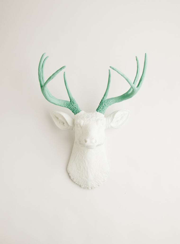 The Isabella | Stag Deer Head | Faux Taxidermy | White w/ Seafoam Green Antlers