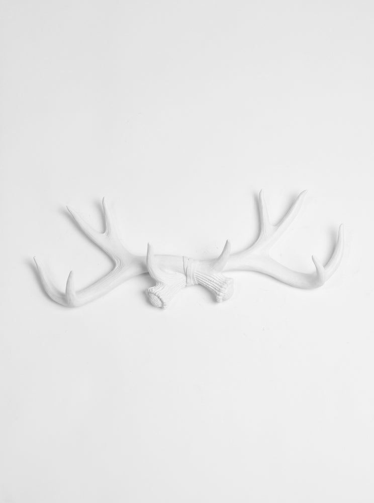 White Antler Wall Rack | Deer Antler Hook | White Resin Antlers