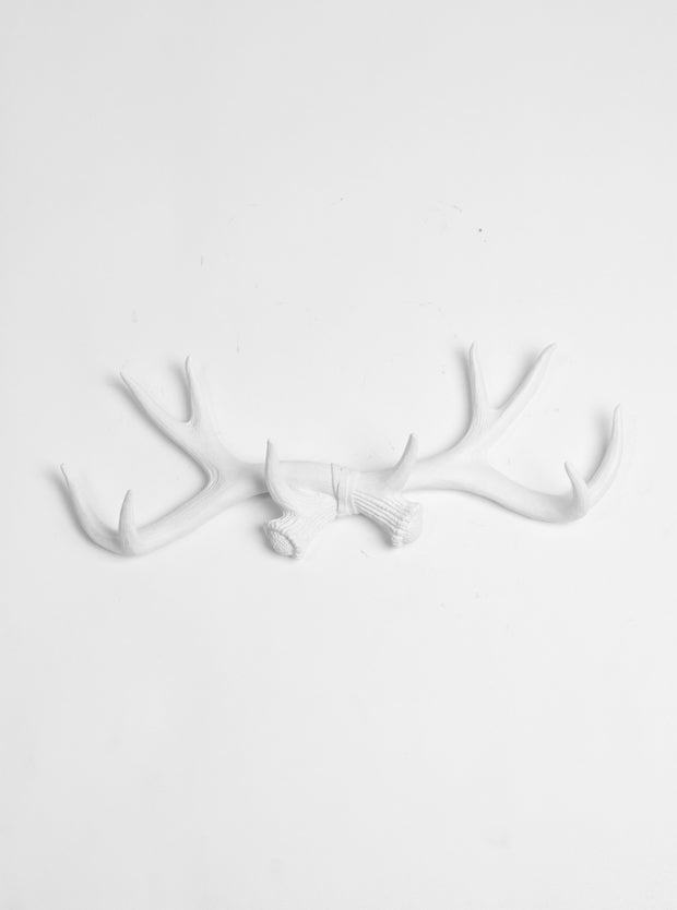 White Deer Antler Rack - Decorative Wall Hook - Faux Antlers Decor - Jewelry Organizer - Resin Decor by White Faux Taxidermy