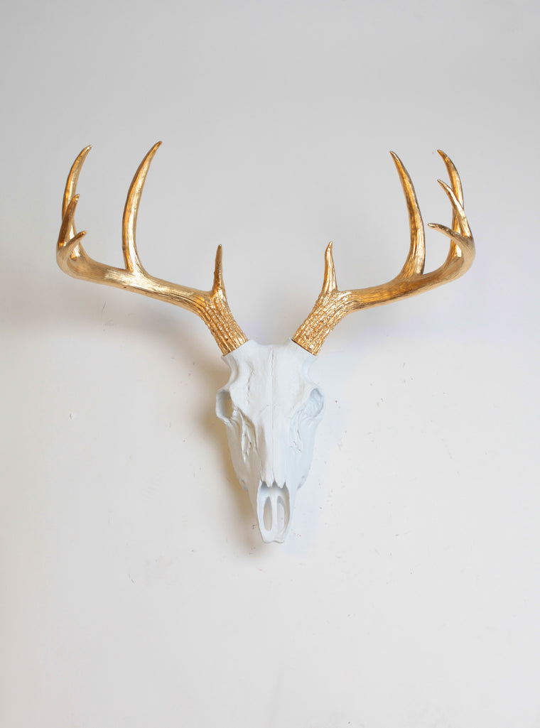 Superieur White U0026 Gold Faux Deer Skull | Stag Skeleton | White U0026 Gold Resin