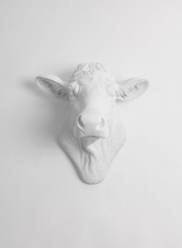The Bessie in White, Cow Head Wall Decor