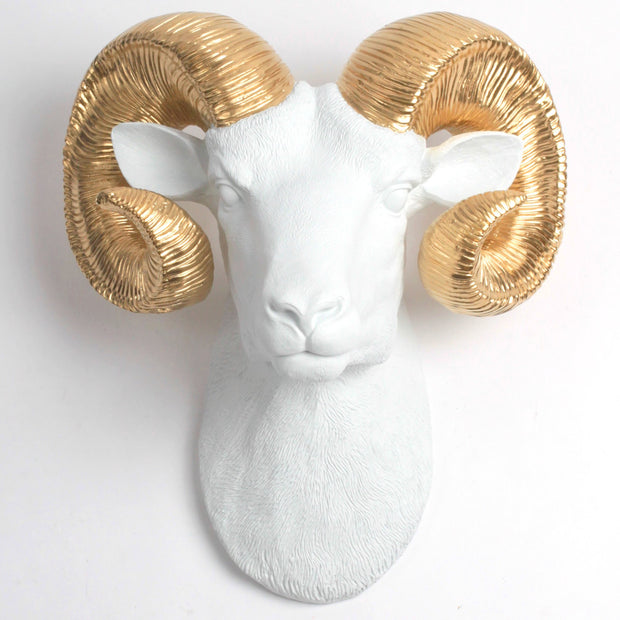 The Darby in White & Gold - XL Ram Head | Bighorn Sheep Modern Farmhouse Decor