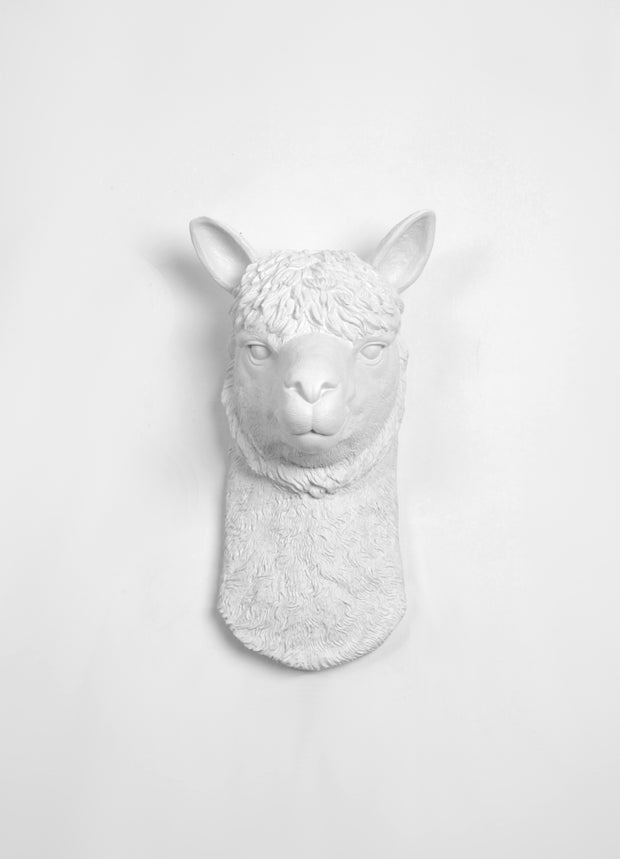"Lima the Llama wall art in White. 14"" tall, 11.25"" wide."