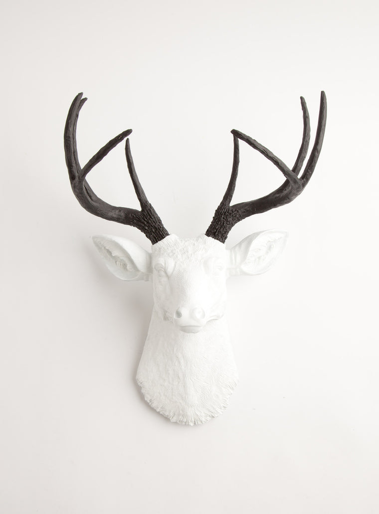 The Maud | Stag Deer Head | Faux Taxidermy | White w/ Black Antlers