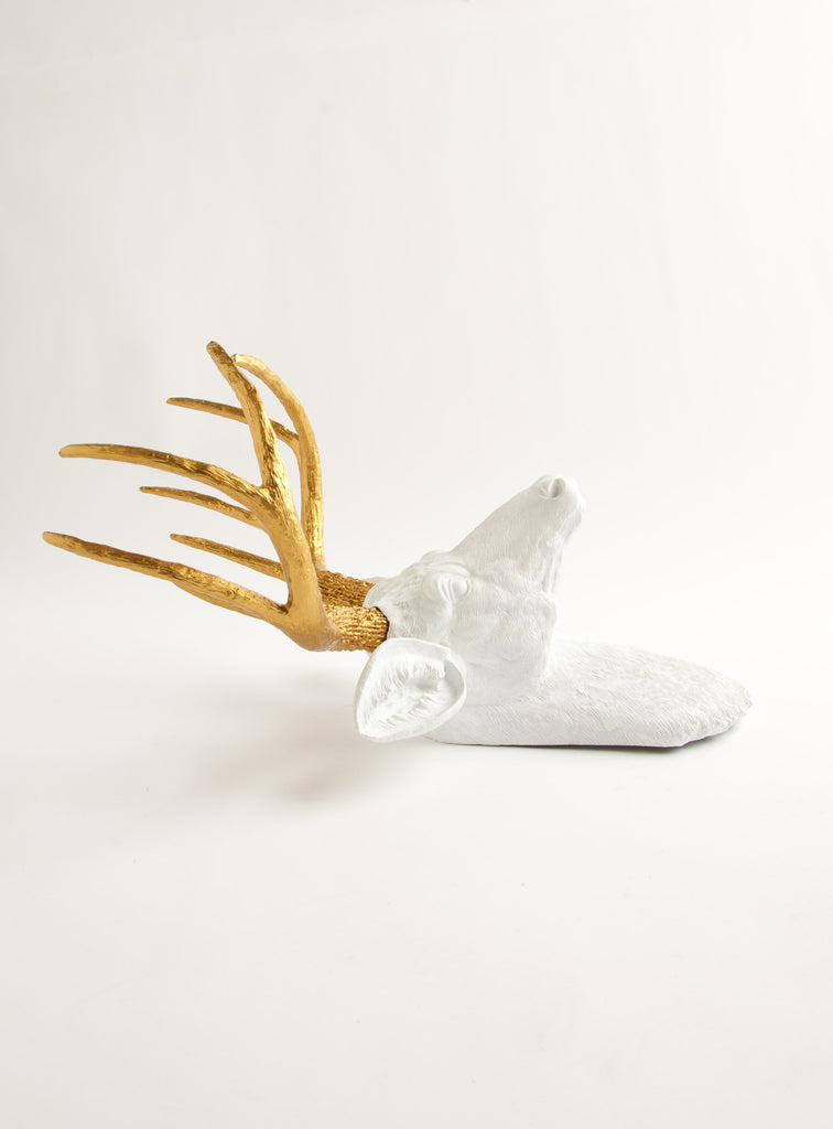 White Deer Head Wall Decor faux deer head taxidermy in white & gold wall decor, the alfred
