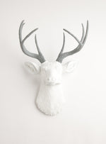 white & gray wall decor deer, The Helena