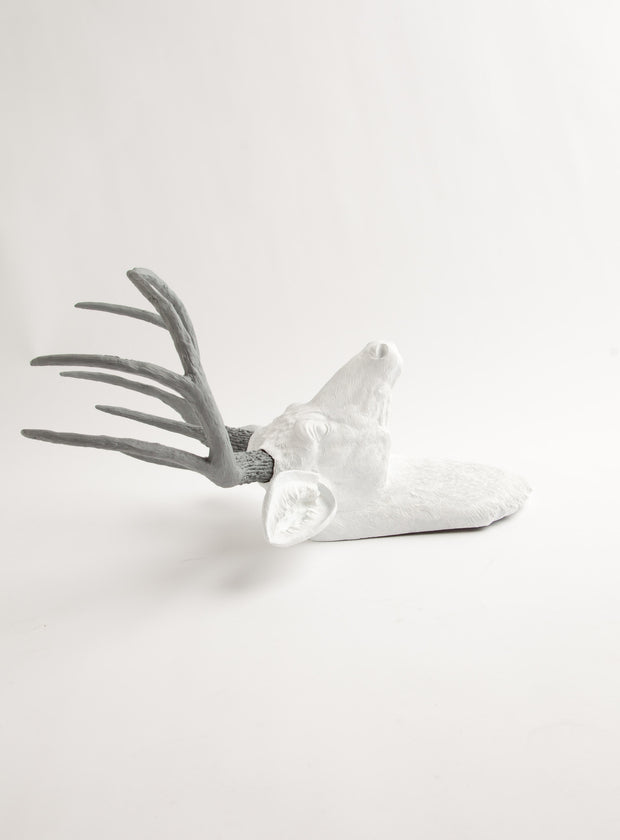 The Helena | Stag Deer Head | Faux Taxidermy | White w/ Gray Antlers