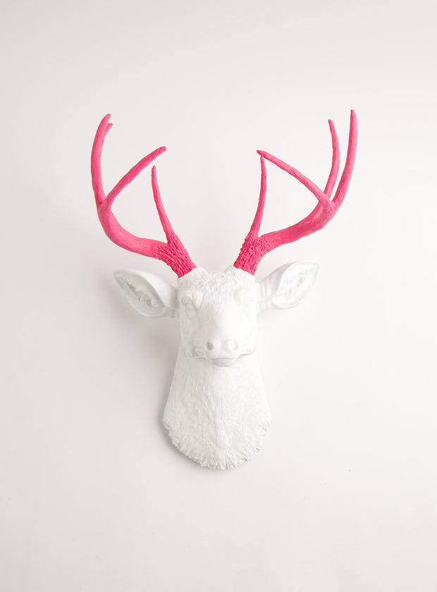 Pink & White wall mount, The Boris. pink resin deer antlers, white faux deer head wall decoration