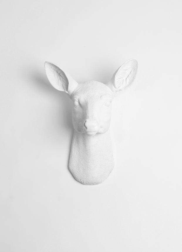 White Resin faux doe deer head without antlers wall sculpture by White Faux Taxidermy