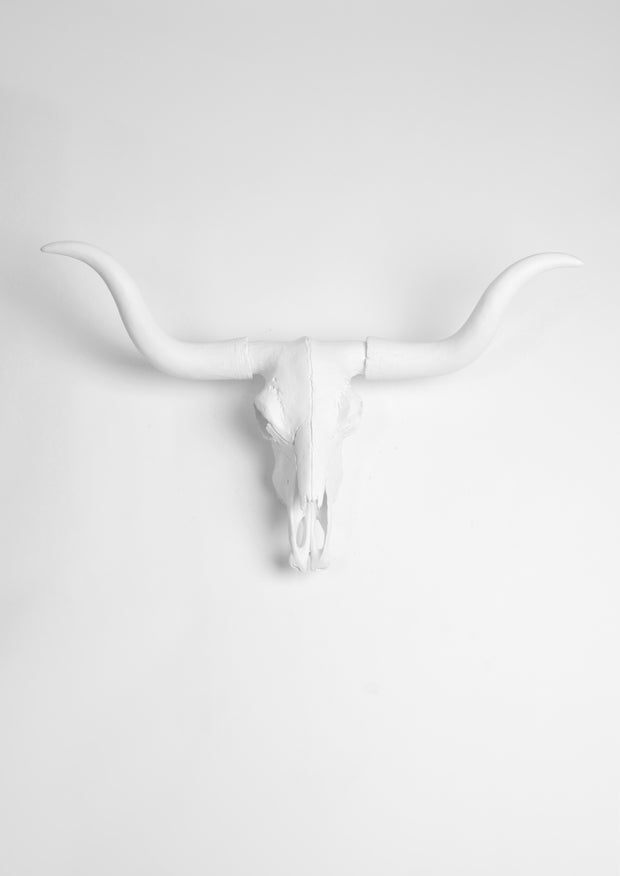 White Longhorn Wall Decor Skull, The Lyndon