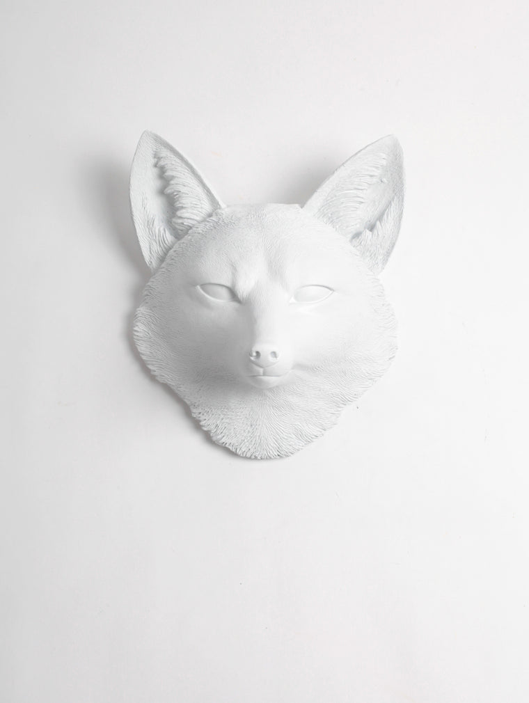 The Sylvester in White, Faux Taxidermy Fox Decor Head
