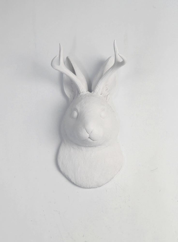 The Corduroy in White  | Jackalope Head | Faux Taxidermy | White Resin