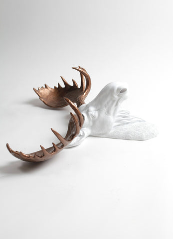 The Boston | Moose Head | Faux Taxidermy | White Resin w/Bronze Antlers